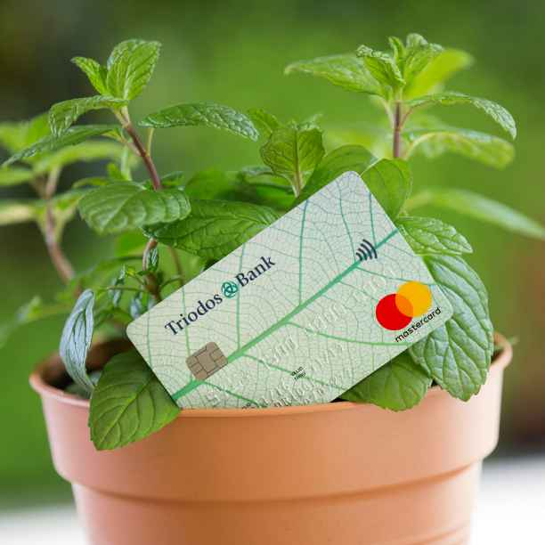 Is this the most eco-friendly bank card in the UK?